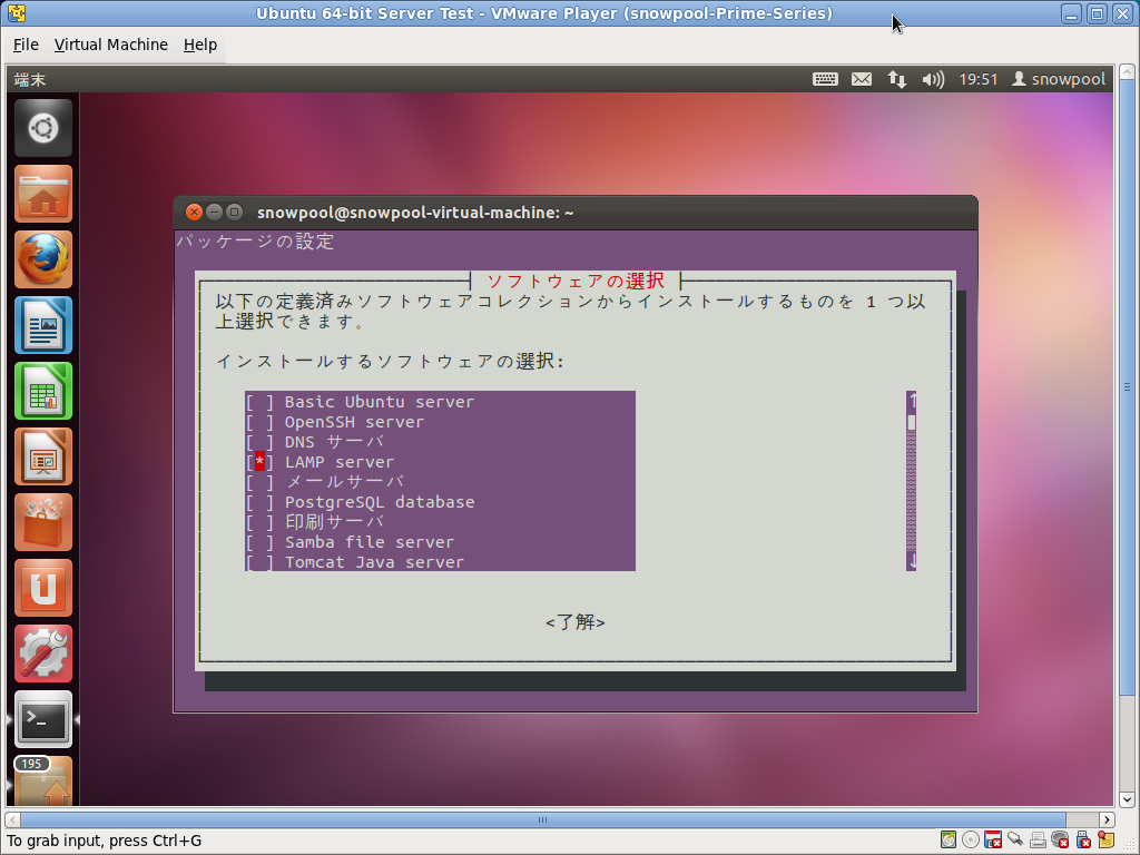 Screenshot-Ubuntu 64-bit Server Test - VMware Player
